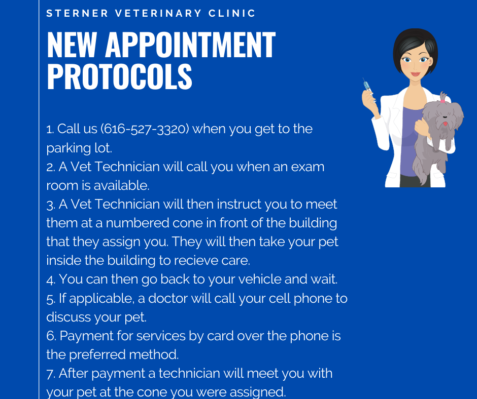 New-Appointment-Protocols-11.17.2020--REAL-.png